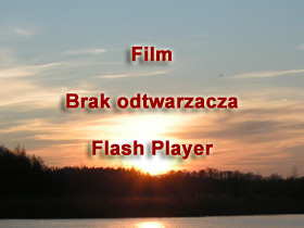 Brak pluginu Flash